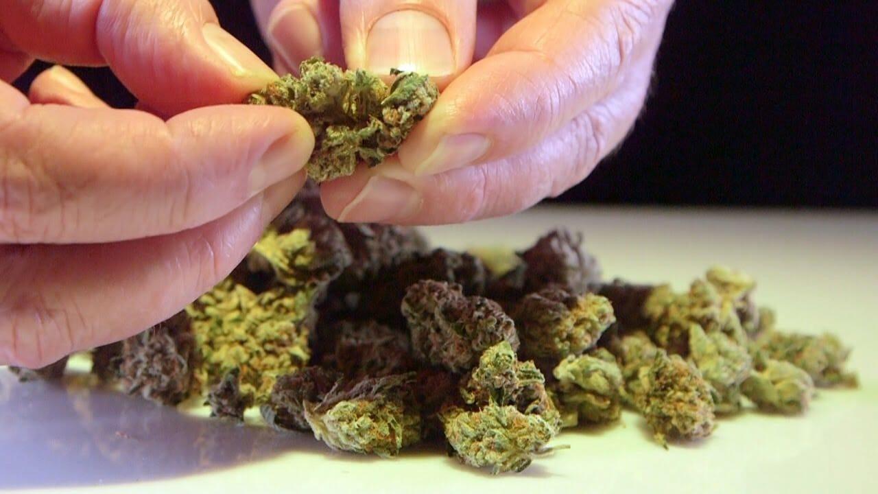 Cannabis Up Close #13: Original El Chapo OG (Indica) – Strain Review
